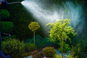 Home Garden Spring Works. Pest Control Spraying. Taking Care of Garden.